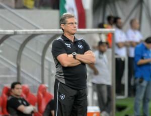 Oswaldo de Oliveira Botafogo x Fluminense (Foto: Antônio Carneiro / Pernambuco Press)