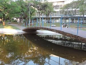 Praça das Cerejeiras também fica o prédio da prefeitura de Bauru (Foto: Alan Schneider/G1)