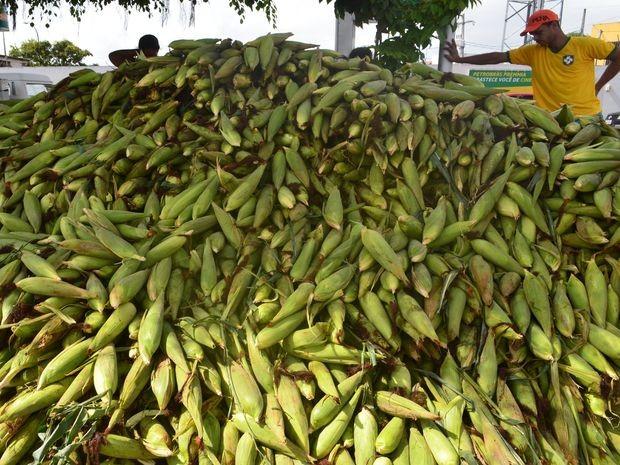 Procura pelo tradicional milho é grande na manhã desta segunda (Foto: Daniel Soares / G1)