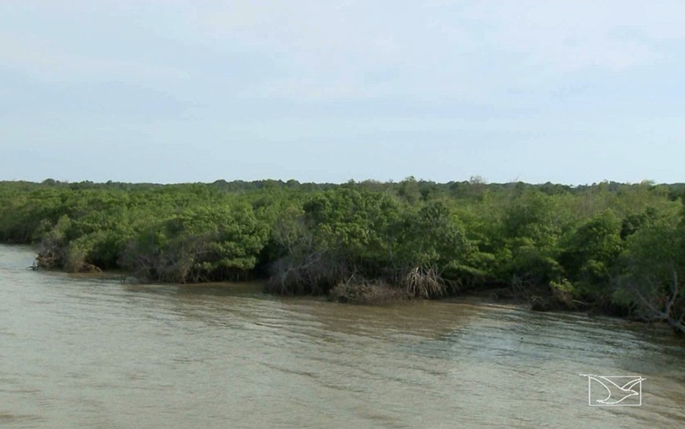 Durante encontro com pescadores e extrativistas, Ministro Sarney Filho anunciou a criação de reservas extrativistas.  (Foto: Reprodução/TV Mirante)