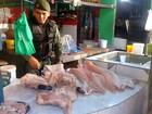 Quilo do peixe pirarucu custa, em média, R$ 8,17 em Rondônia