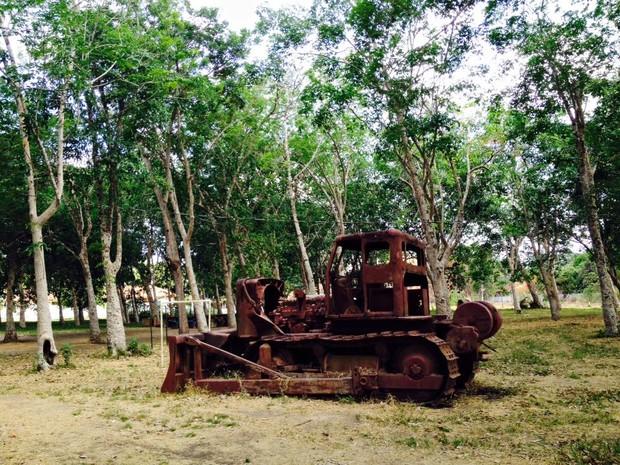 Belterra possui vasto e rico patrimônio histórico, herdado da implantação do Projeto Ford, em 1934 (Foto: Adonias Silva/G1)