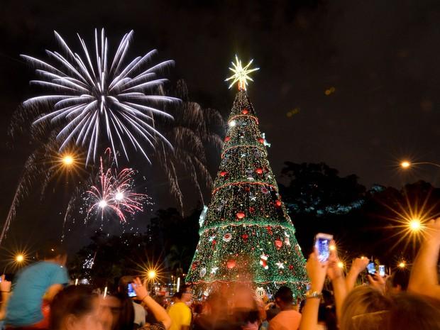 Árvore de Natal do Ibirapuera é inaugurada com fogos de artifício neste sábado (Foto: Levi Bianco/Brazil Photo Press/Estadão Conteúdo)