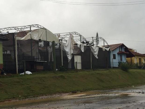 Galpões foram danificados pela chuva (Foto: Geovanne Danioti/Arquivo pessoal)