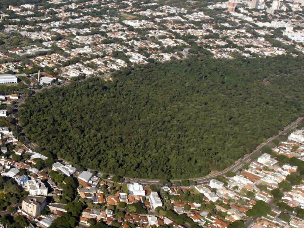 Para o MP-PR, árvores no Bosque II, em Maringá, não deveriam ser cortadas, pois área é de preservação ambiental. (Foto: Divulgação/Prefeitura de Maringá)