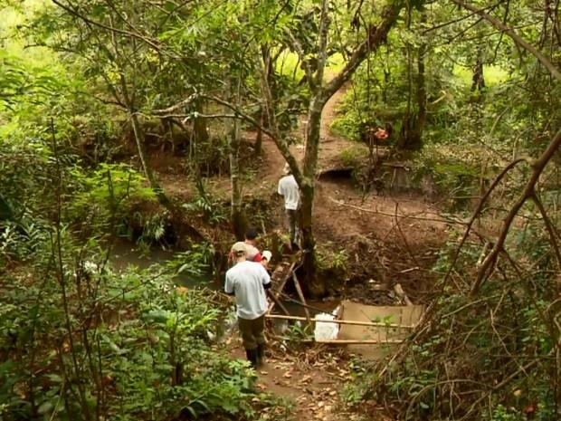 Secretarias de Saúde fazem varredura em busca de mais macacos mortos no Sul de Minas (Foto: Reprodução EPTV)