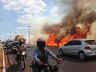 Julho registra mais focos de incêndio do que o 1º semestre inteiro no Piauí