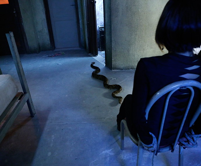 Cobra rasteja aos pés da dublê de Gloria Pires (Foto: Ellen Soares/Gshow)
