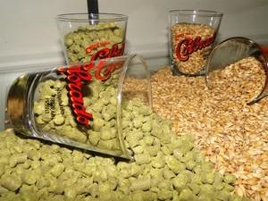 Lúpulo e malte, dois dos principais ingredientes da cerveja (Foto: Taiga Cazarine/G1)