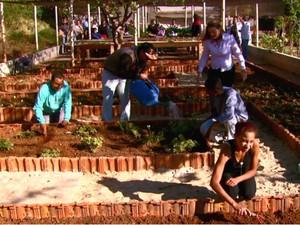 Jardim ajuda os alunos a trabalharem os sentidos (Foto: Wilson Aiello/EPTV)