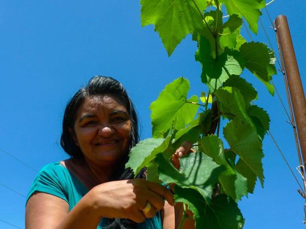 Sônia Silva acredita que o plantio de uva é alternativa para incrementar a renda dos assentados (Foto: Fred Veras/Sebrae)