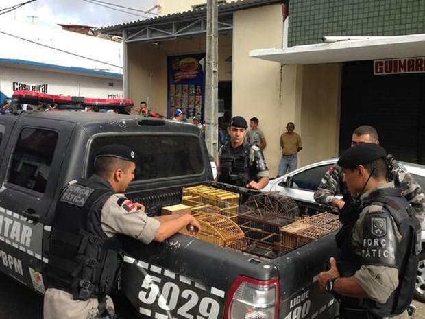 Aves e um jabuti foram apreendidos em operação na Feira Central (Foto: Divulgação/2ºBPM)