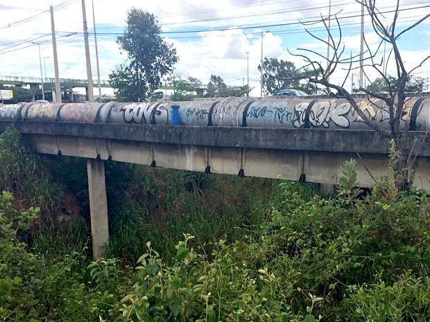 Viaduto de onde jovem foi jogado após ter sido assaltado (Foto: Luciana Amaral/G1)