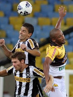 Botafogo Criciúma (Foto: Satiro Sodré / Botafogo)