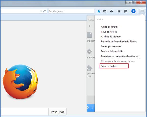 Versão de navegadores  (Foto: Versão de navegadores )