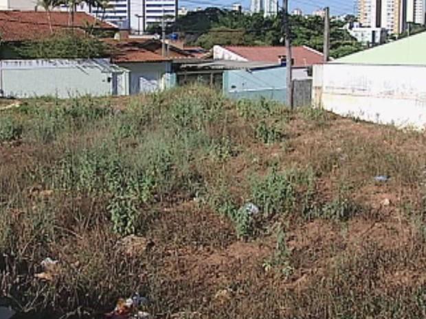 Crime aconteceu em um terreno baldio próximo do local da festa (Foto: Reprodução / TV TEM)