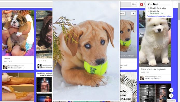 Extensão permite ver fotos em zoom antes de clicar no post do Pinterest (Foto: Reprodução/Barbara Mannara)