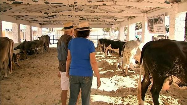 As atrações da Expoece também é assunto no NE Rural. (Foto: Divulgação)