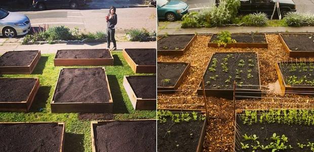 Jardim transformado em horta (Foto: Reprodução/MNN)