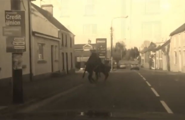 Burros foram filmados brigando no meio de rua em Swanlinbar (Foto: Reprodução/YouTube/Anglo Celt)