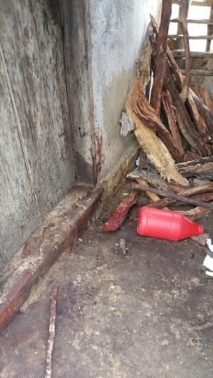 Polícia encontrou madeira com sangue do lado de fora da casa (Foto: Divulgação/Polícia Civil)