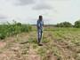 Globo Rural mostra como chuvas têm mudado rotina de agricultores na PB