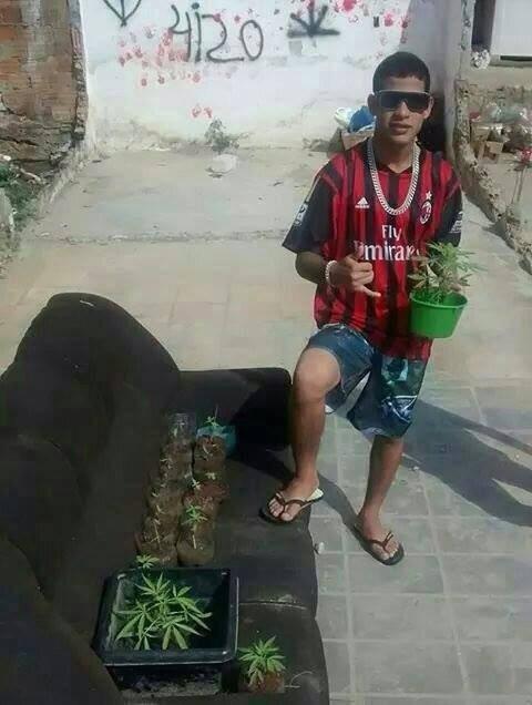 Jovem postou foto com pés de maconha em Itajaí (Foto: Reprodução/Facebook)