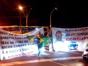 Manifestantes em Ribeirão Preto, SP, pedem saída da presidente Dilma Rousseff (Foto: Rodolfo Tiengo/G1)