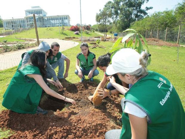 Visitantes plantam muda de árvore em ação organizada pela Secretaria do Meio Ambiente no Jardim Botânico (Foto: Prefeitura de Sorocaba)