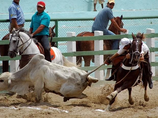 Competições serão realizadas no Parque de Vaquejada Natureza (Foto: Prefeitura do Cantá/Divulgação)