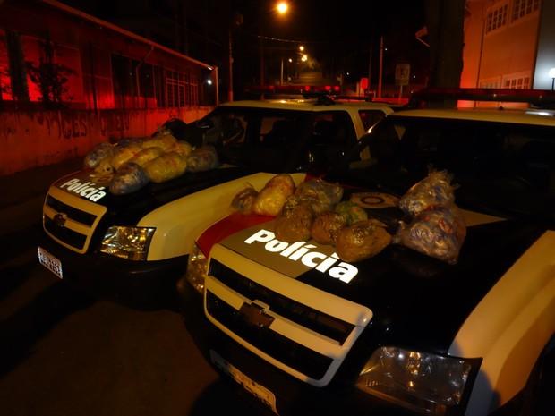Drogas apreendidas em Campos do Jordão (Foto: Divulgação/Polícia Militar)