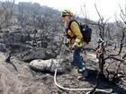 Bombeiros lutam para extinguir incêndio florestal na Califórnia
