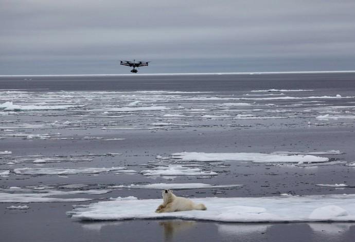 Pedro Oliva Caiaque extremo, Ártico  (Foto: Facebook)