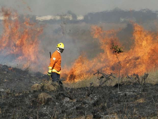 Bombeiro trabalha no combate a incêndio que atingiu o Parque Boca da Mata, no DF (Foto: Corpo de Bombeiros DF/Divulgação)