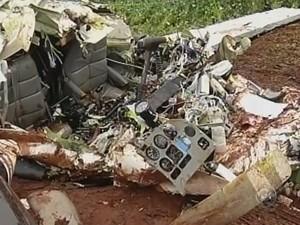 Destroços do avião ficaram espalhados pela plantação de soja (Foto: Reprodução TV TEM)