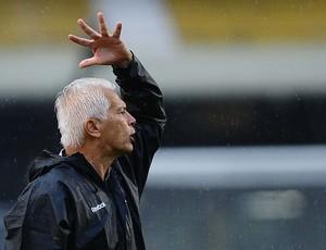 Emerson Leão reclama contra Lusa (Foto: Marcos Ribolli / Globoesporte.com)