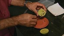 Veja como tirar mau cheiro de utensílios e ambientes (Reprodução/ TV Asa Branca)