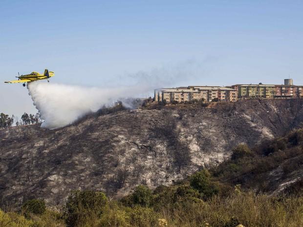 Avião ajuda a combater fogo em Valparaíso (Foto: Pablo Sanhueza/Reuters)