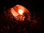Moradores de São Carlos reclamam da falta de iluminação nos bairros