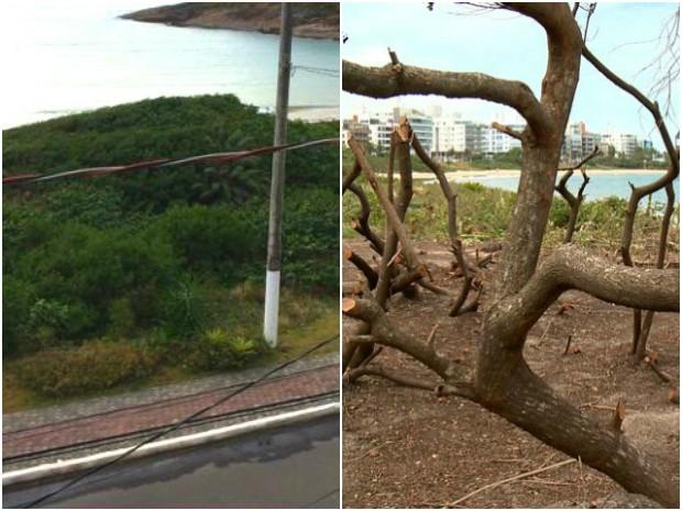 Comparação feita entre a mesma área. A primeira foto foi tirada há alguns meses e a segunda neste fim de semana (Foto: Reprodução/ TV Gazeta)