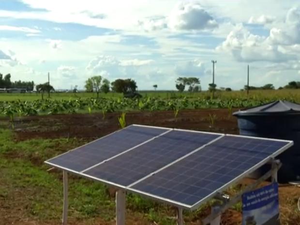 Energia solar é sinônimo de lucro na zona rural (Foto: Reprodução/Rede Globo)