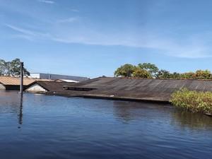 RO CHEIA Casas no Bairro Triângulo apenas com o telhado aparente  (Foto: Dayanne Saldanha/G1 RO)