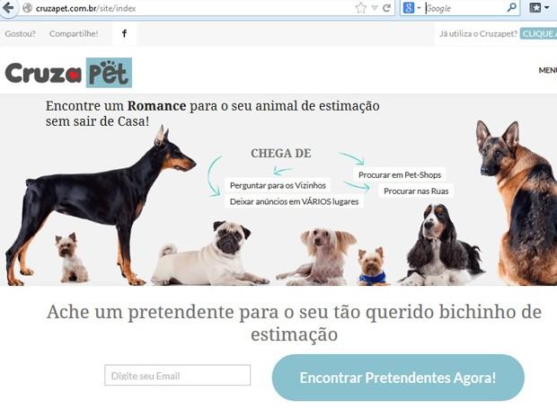Site criado pelo engenheiro para ajudar donos de animais a encontrar parcerios para seus bichos (Foto: Reprodução)