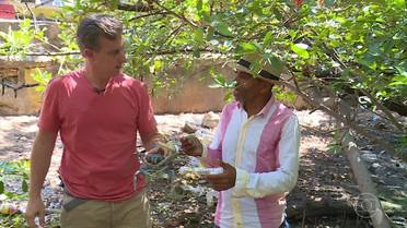 Vou de Táxi- Huck compra caranguejos e os devolve na natureza!