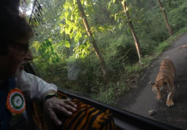 Cena ocorreu no Parque Nacional de Sanjay Gandhi (Foto: Reprodução/Facebook/Amitabh Bachchan)