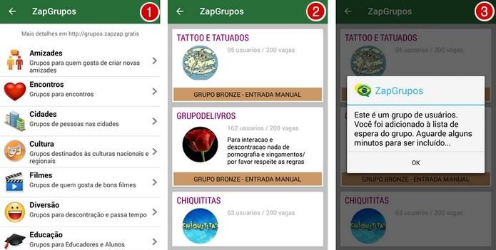 ZapGrupos é dividido em categorias como amizade, cultura e educação (Foto: Reprodução/ Raquel Freire)
