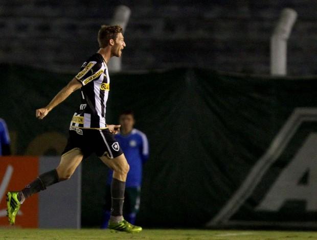 Bolatti Palmeiras x Botafogo (Foto: Célio Messias/Agência Estado)