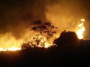 Incêndio atinge região da Chapada Diamantina nesta sexta-feira (Foto: Edmar de Lima de Carvalho/ICMBio)