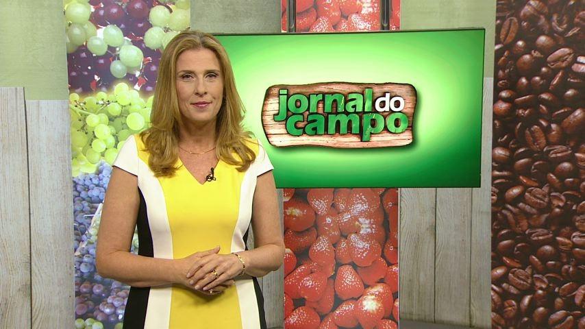 Claudia Gregório comanda o Jornal do Campo (Foto: Divulgação/ TV Gazeta)