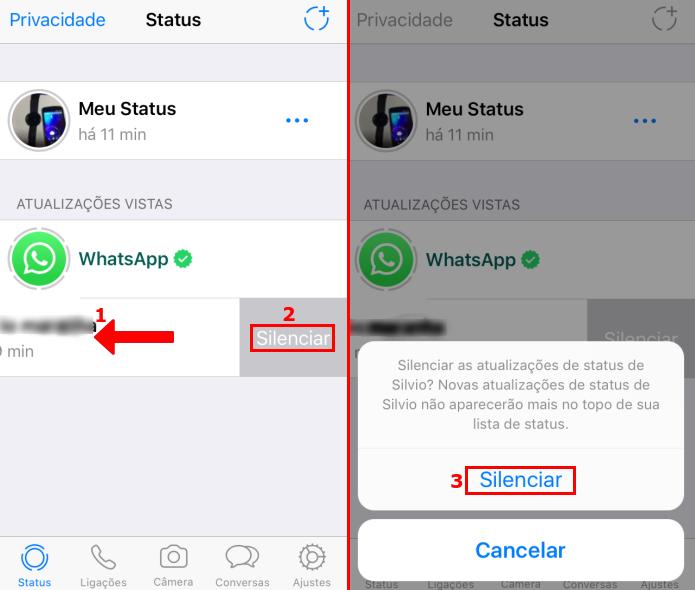 Silenciando o status de um contato no WhatsApp (Foto: Reprodução/Edivaldo Brito)